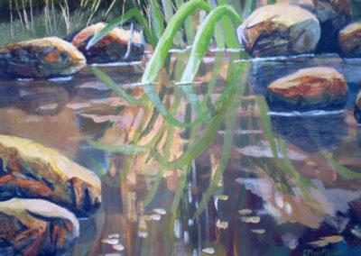 Pond Dance